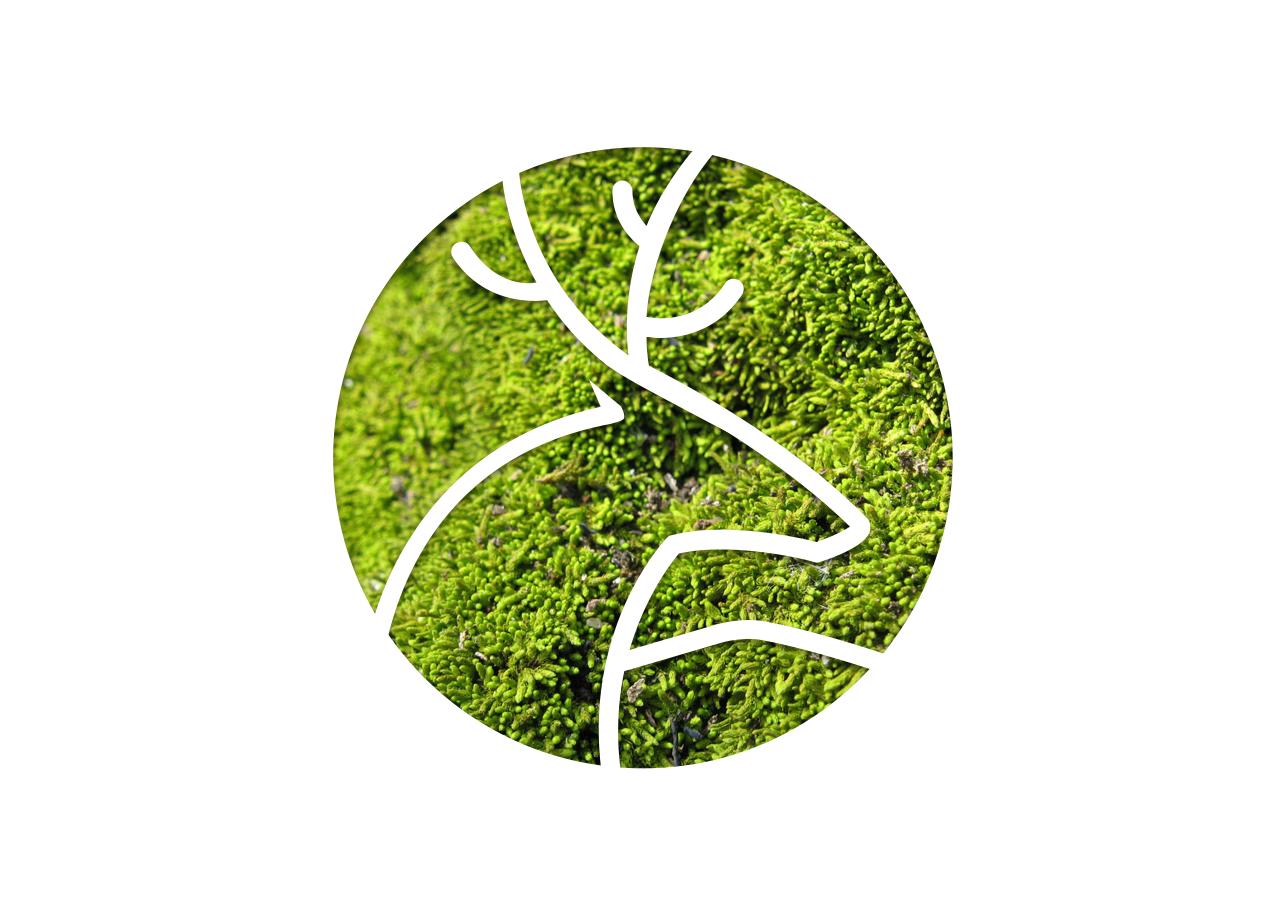 Wilhelm logo White on Green